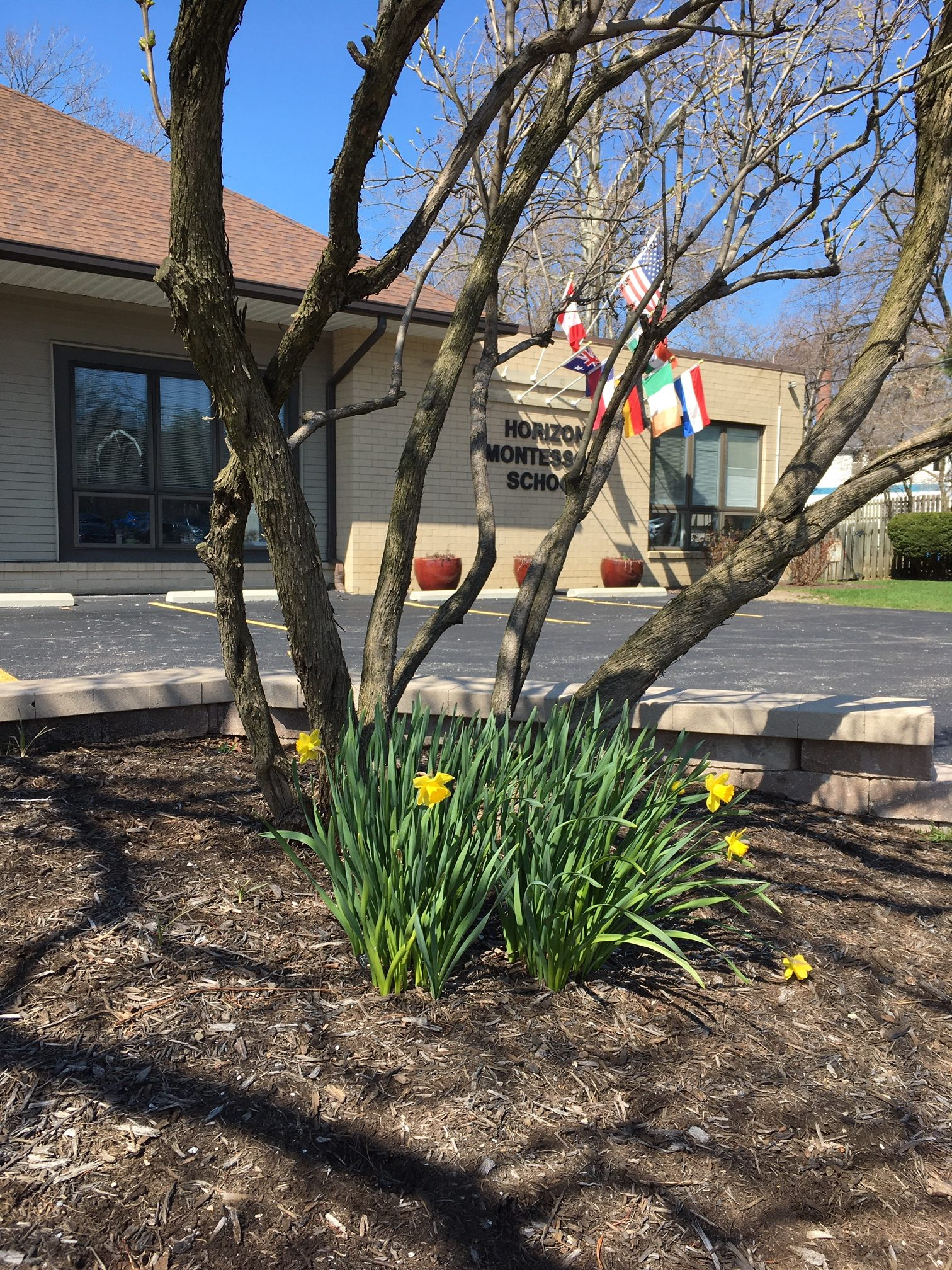 A photo of Horizon Montessori on a clear spring day