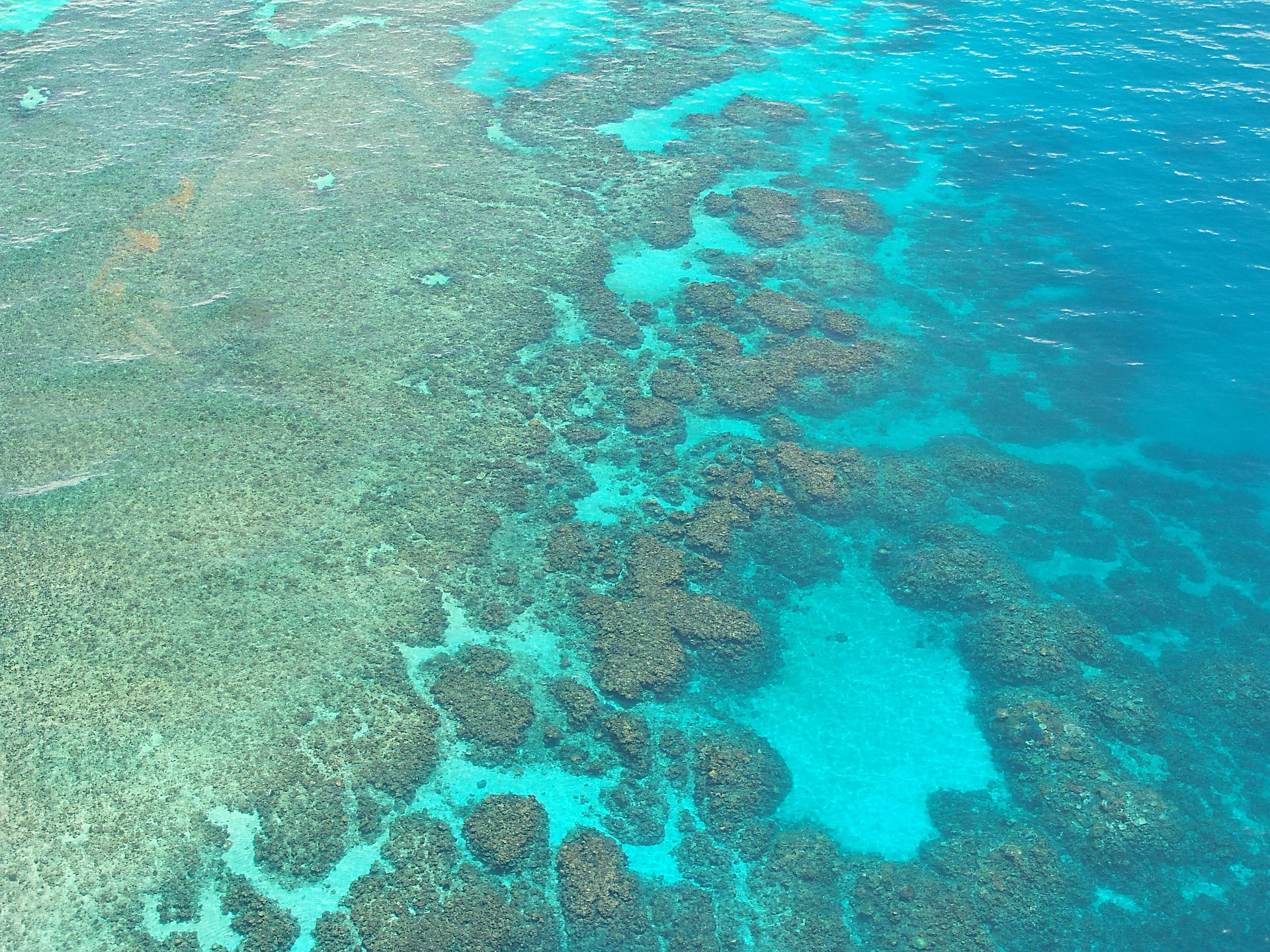 Part of the Great Barrier Reef in blue-green waters